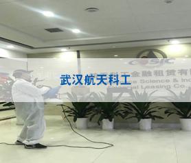 武汉航天科工消毒杀菌项目案例