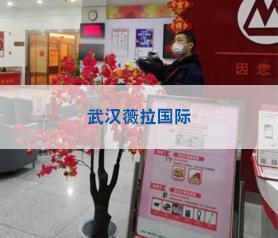 武汉薇拉国际摄影消毒杀菌项目案例