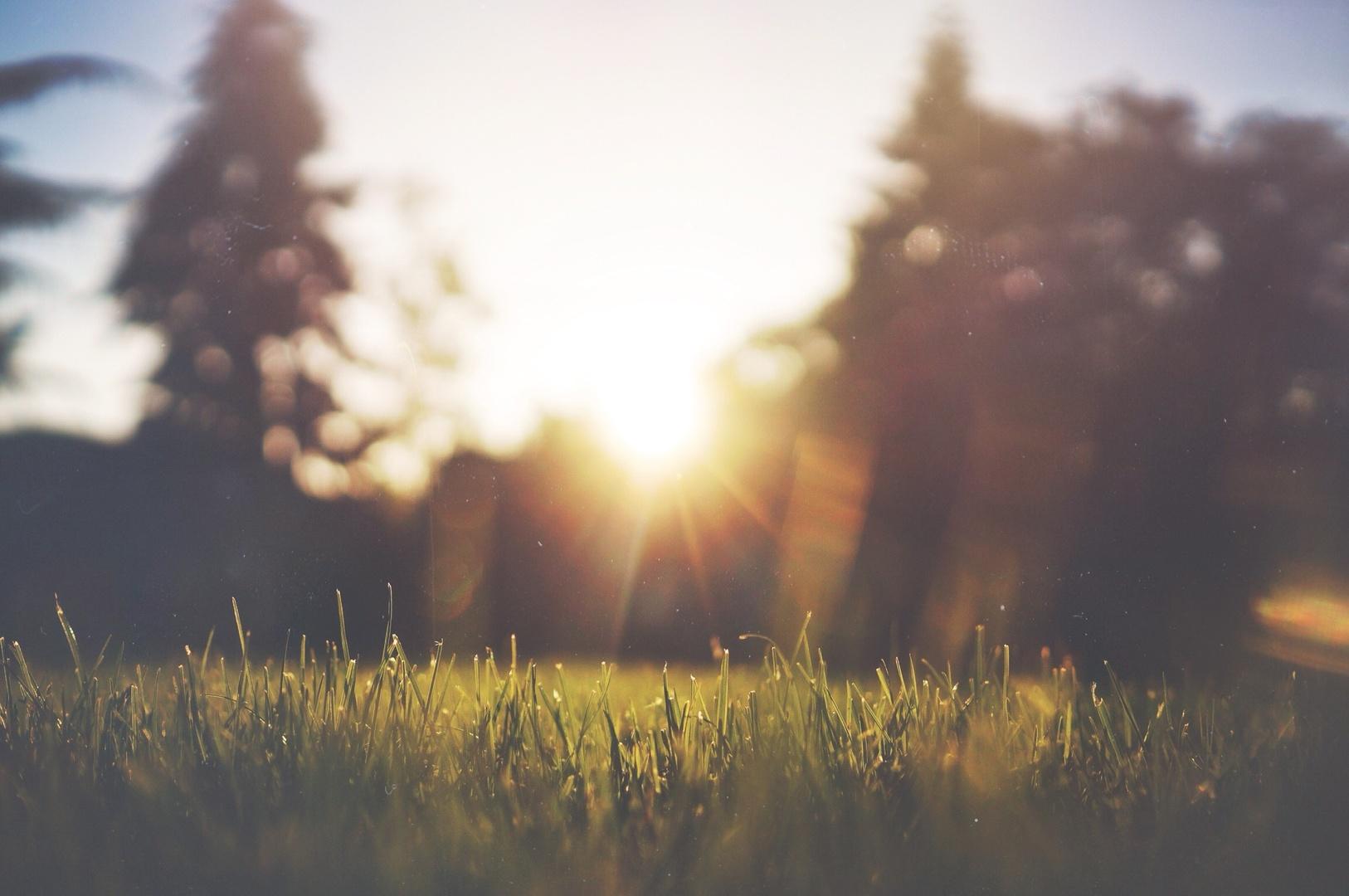 美国德克萨斯州立大学研究报告显示:负氧离子对人体有33种功效