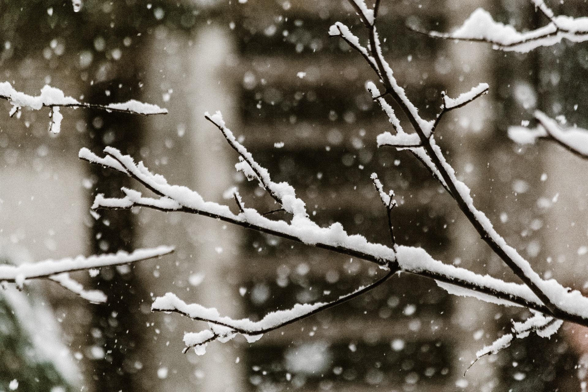 冬季搬新家后,出现这些症状要重视!